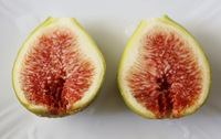 日々果物生活.jpg